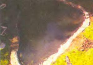 Края гидроизоляции завели в канавку, выкопанную по периметру пруда - и присыпали щебнем.