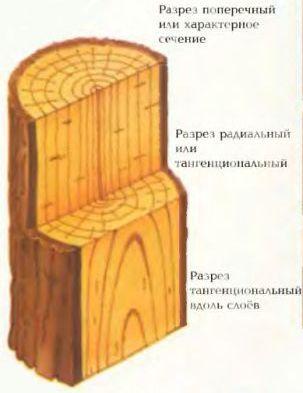 Различные виды разрезов древесины