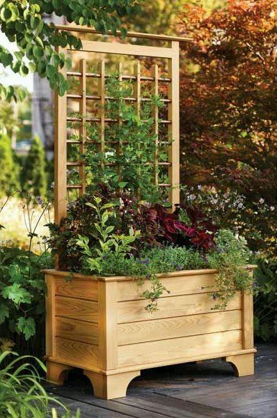Переносной цветник, клумба с трельяжными решетками для вьющихся растений (шпалерой)