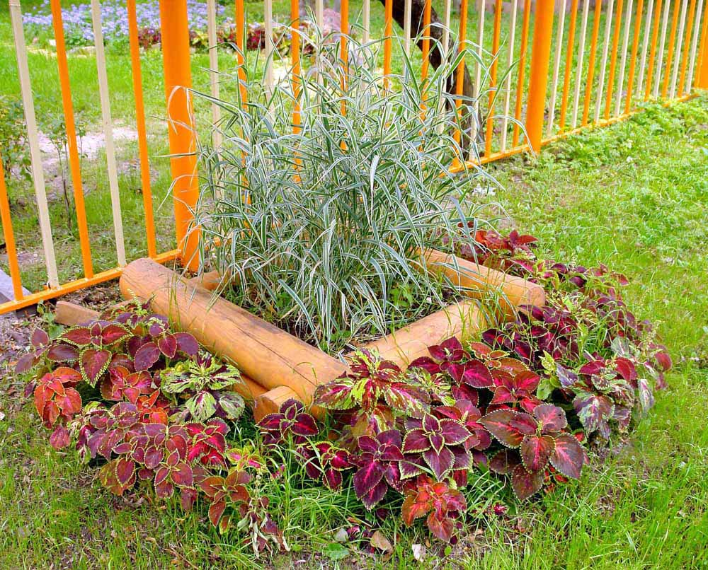 Клумба-сруб - бревенчатый домик для цветов