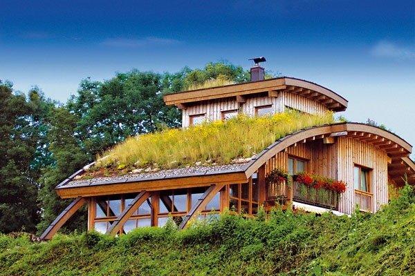 Озеленение крыши дома