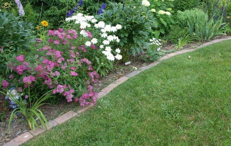 Садовый бордюр для клумбы