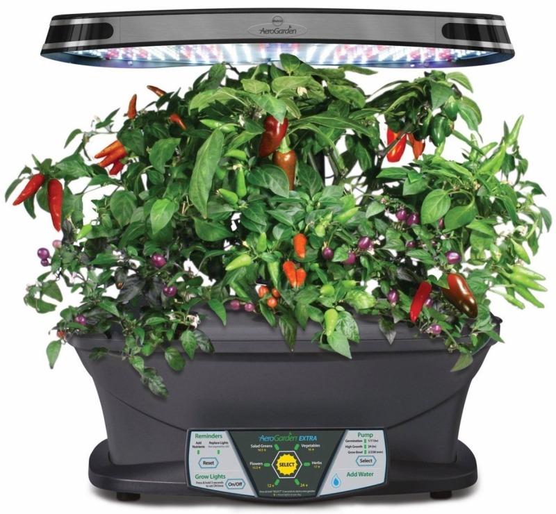 Комнатное овощеводство – новый взгляд на кухонный интерьер