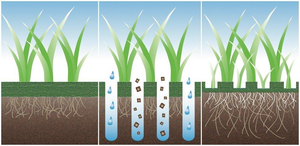 Результат работы газонного аэратора (до, во время и после обработки)