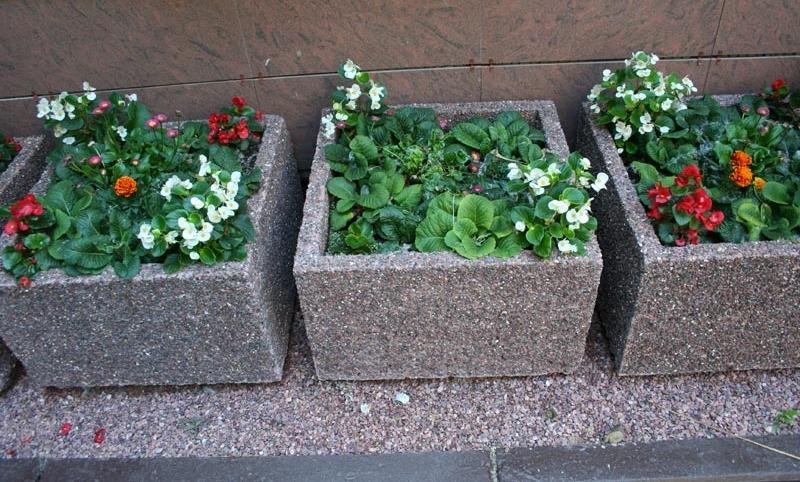 Вазоны и цветочницы из бетона своими руками 77