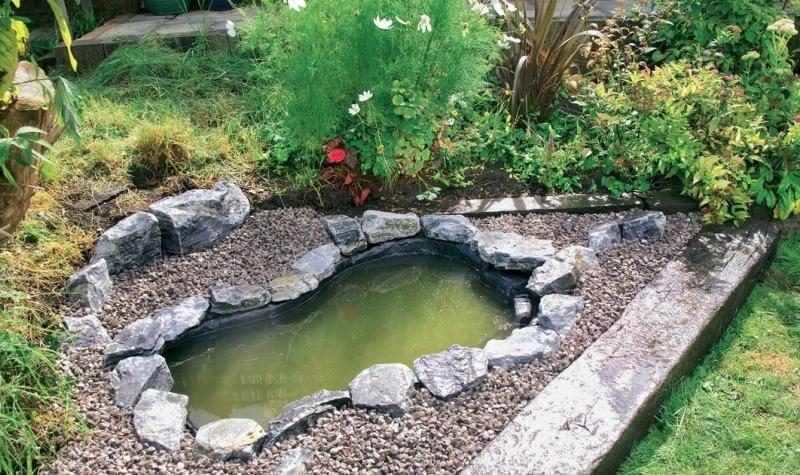 Как быстро сделать садовый пруд
