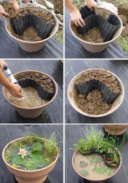 Делаем мини-водоем своими руками. Основные этапы создания мини-водоема