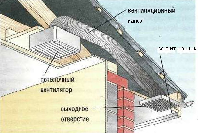 Как сделать в своем доме душ и туалет 578
