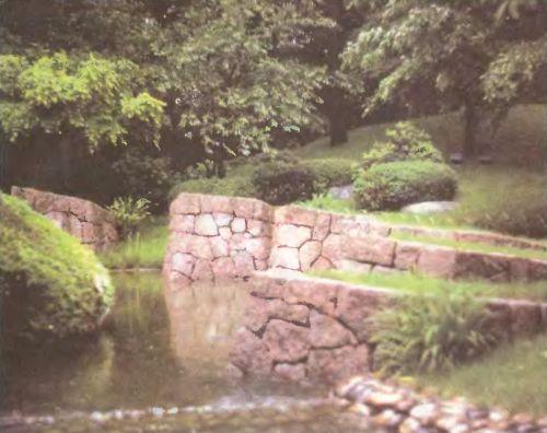 Старый пруд можно облагородить