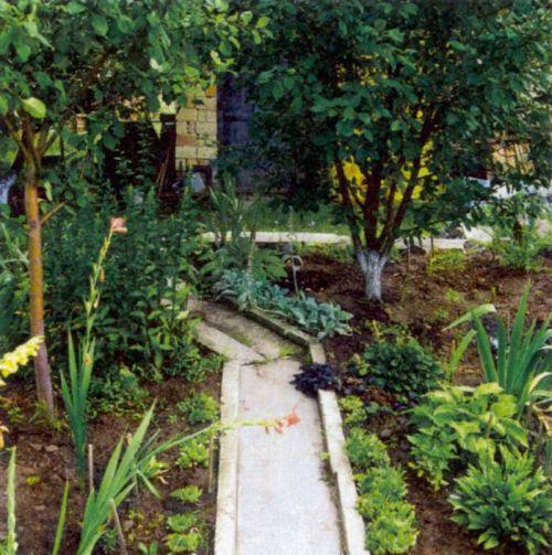 Садовые дорожки из монолитного бетонного покрытия