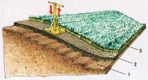 Газонирование склона одерновкой: 1 — подпочвенный слой снят ступеньками; 2 — трамбовка плодородного грунта; 3 — дернина (рулонный газон)