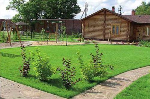 Элитный садовый газон из узколистовых трав имеет высокую степень декоративности, но менее износостоек