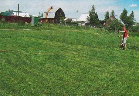 Загонный способ косьбы обычно применяют на небольших участках с окультуренным луговым травостоем. Полосатого рисунка не получается, но разновидовая дикая трава при таком кошении отрастает с более-менее одинаковой скоростью. Кроме того, так косят и участки по секторам: чаще сектора, расположенные ближе к дому, и реже — «задворки»