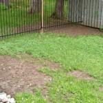 Типичные ошибки обустройства газона