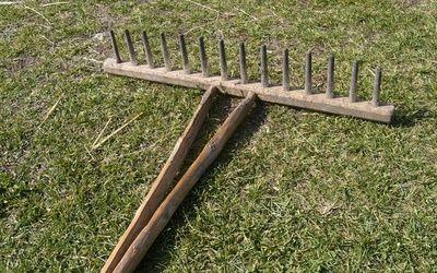 Деревянные грабли не стали анахронизмом для любителей газонов