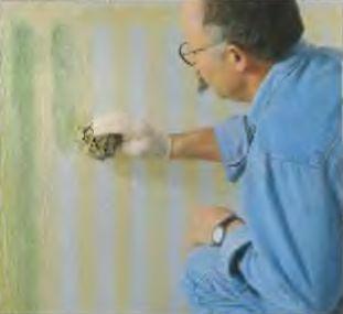 Первый слой краски сильно разводят водой и наносят губкой