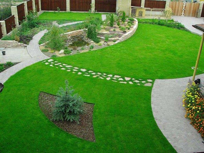 Как правильно разбить газон?