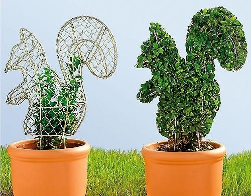 Фигурная стрижка растений - стационарный шаблон