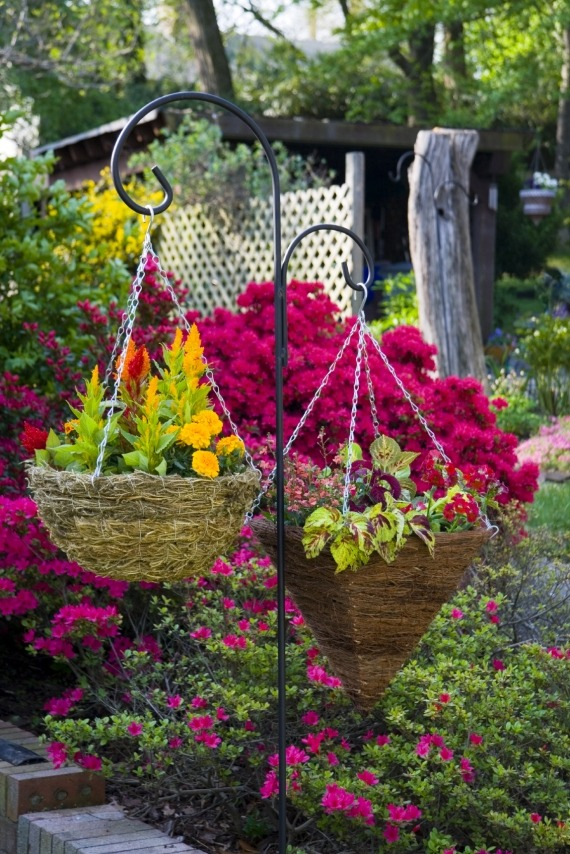 Кашпо с яркими цветами
