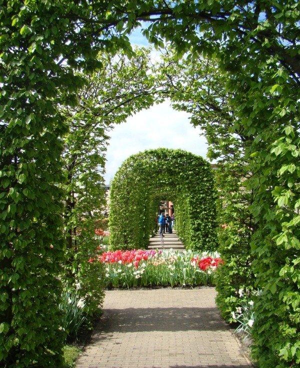 Зеленая арка
