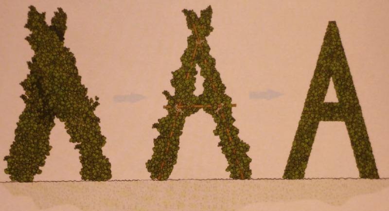 Формирование букв и цифр из растений