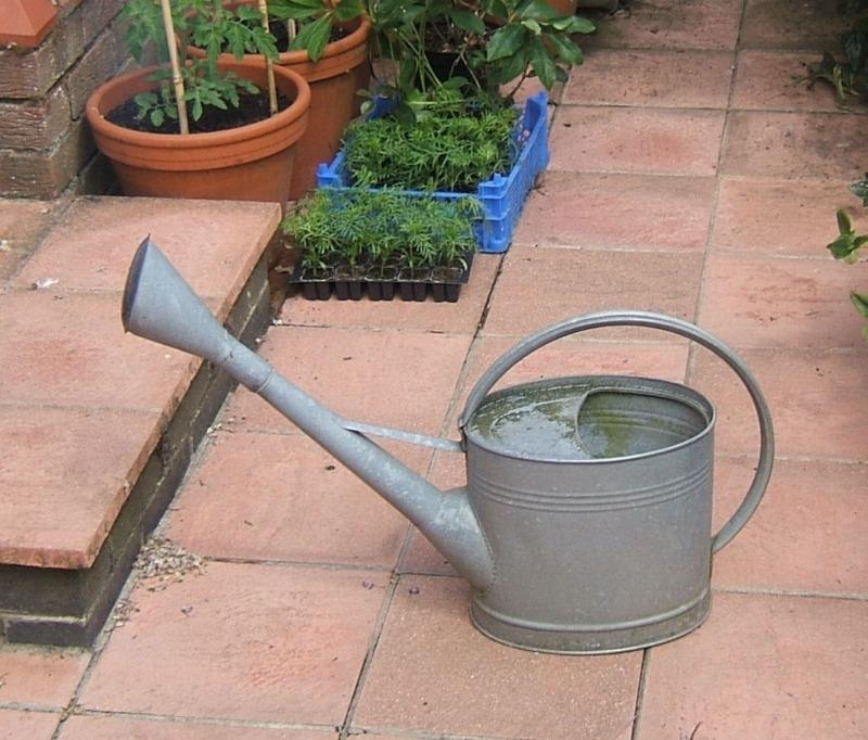 Обычная садовая лейка
