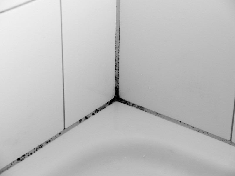 Плесень на бортике ванны