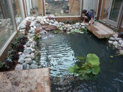 Декоративный пруд в зимнем саду