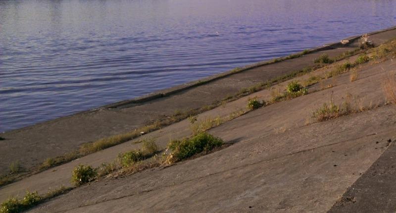 Бетонирование берега