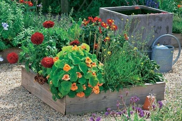Как сделать простой и красивый цветник