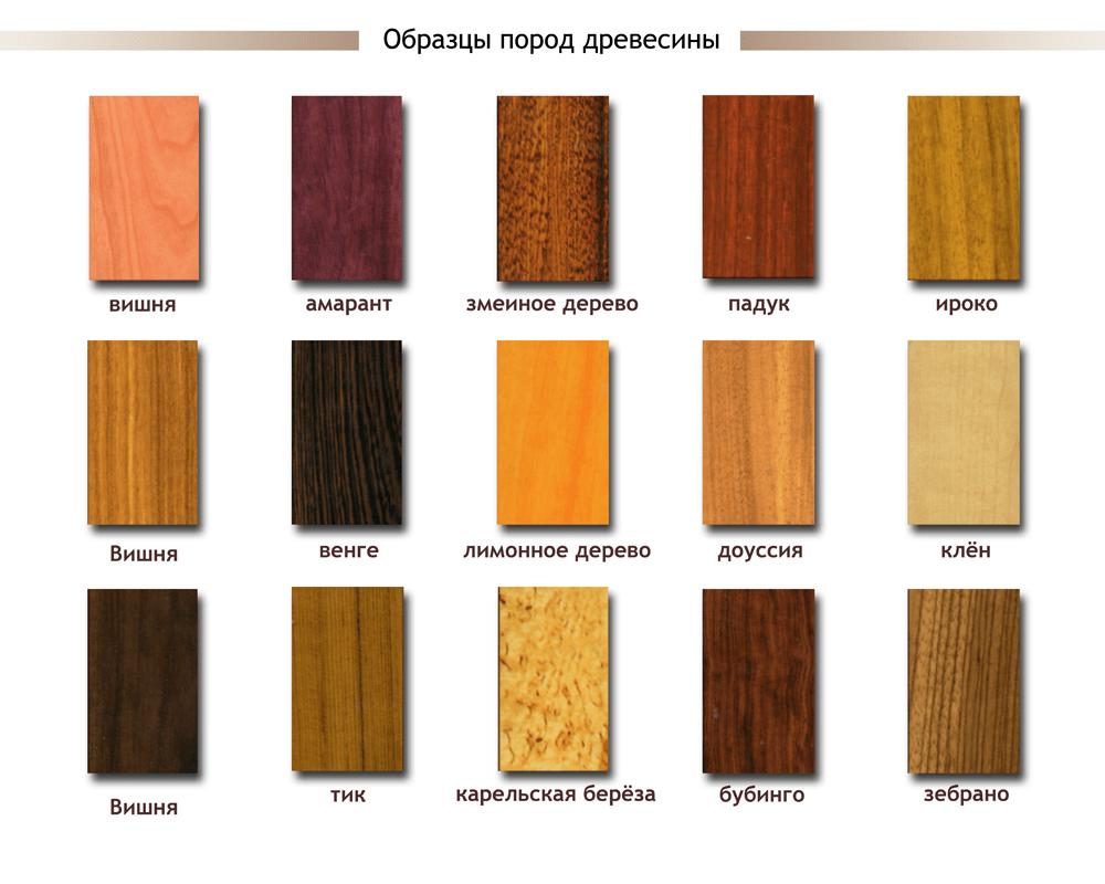 Фактура различных пород древесины