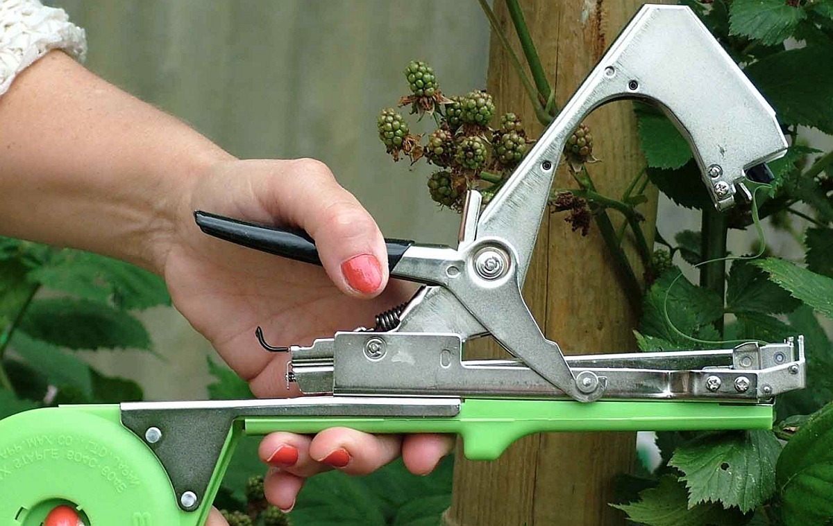 Тапенер - для подвязывания растений